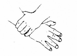 hands only logo